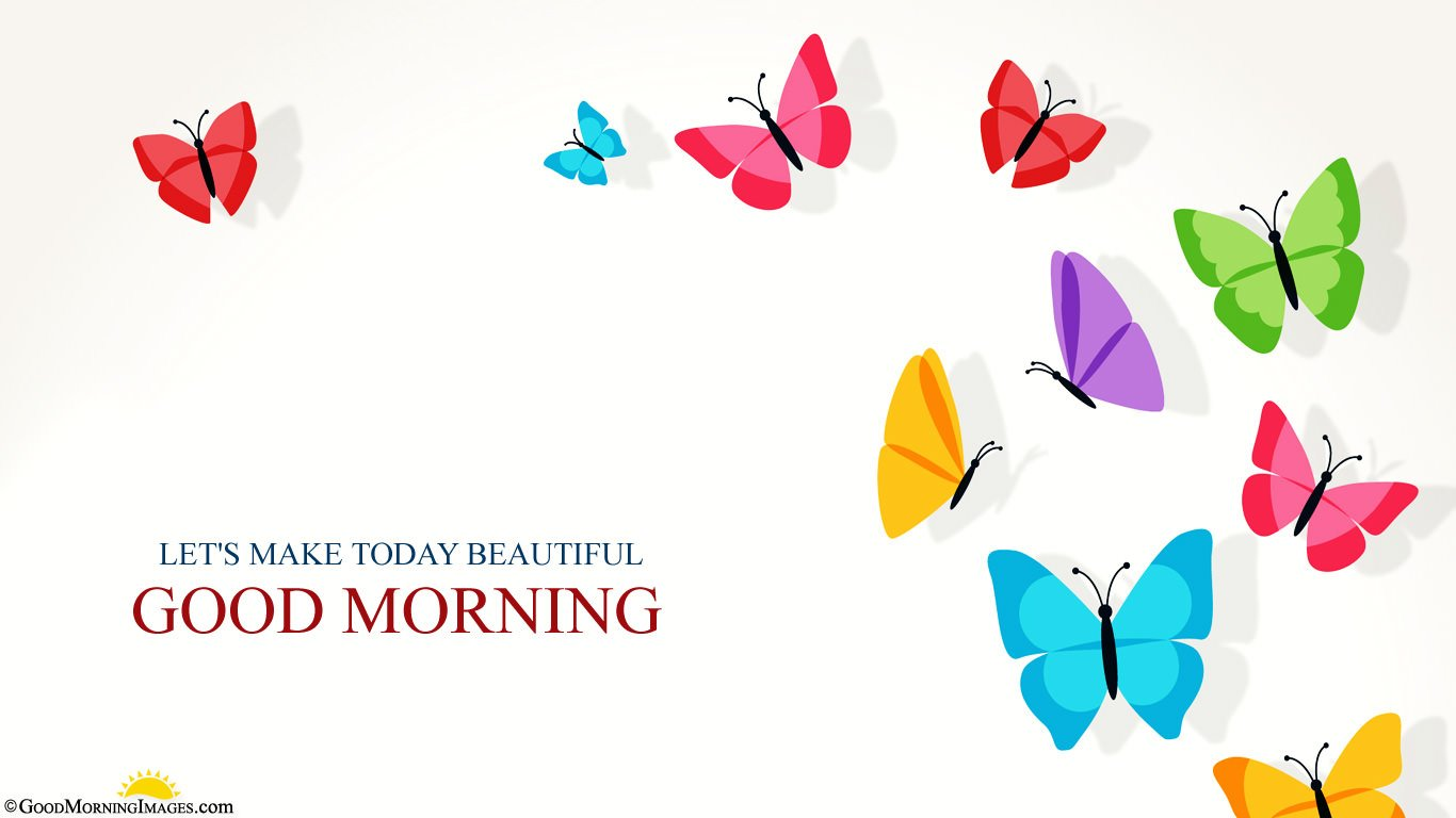 Beautiful Good Morning Butterfly Full HD Wallpaper
