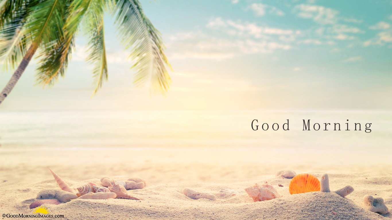 Full HD Morning Wallpaper For Laptop