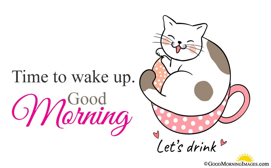 Full Hd Cute Cat Picture With Morning Wishes Quote