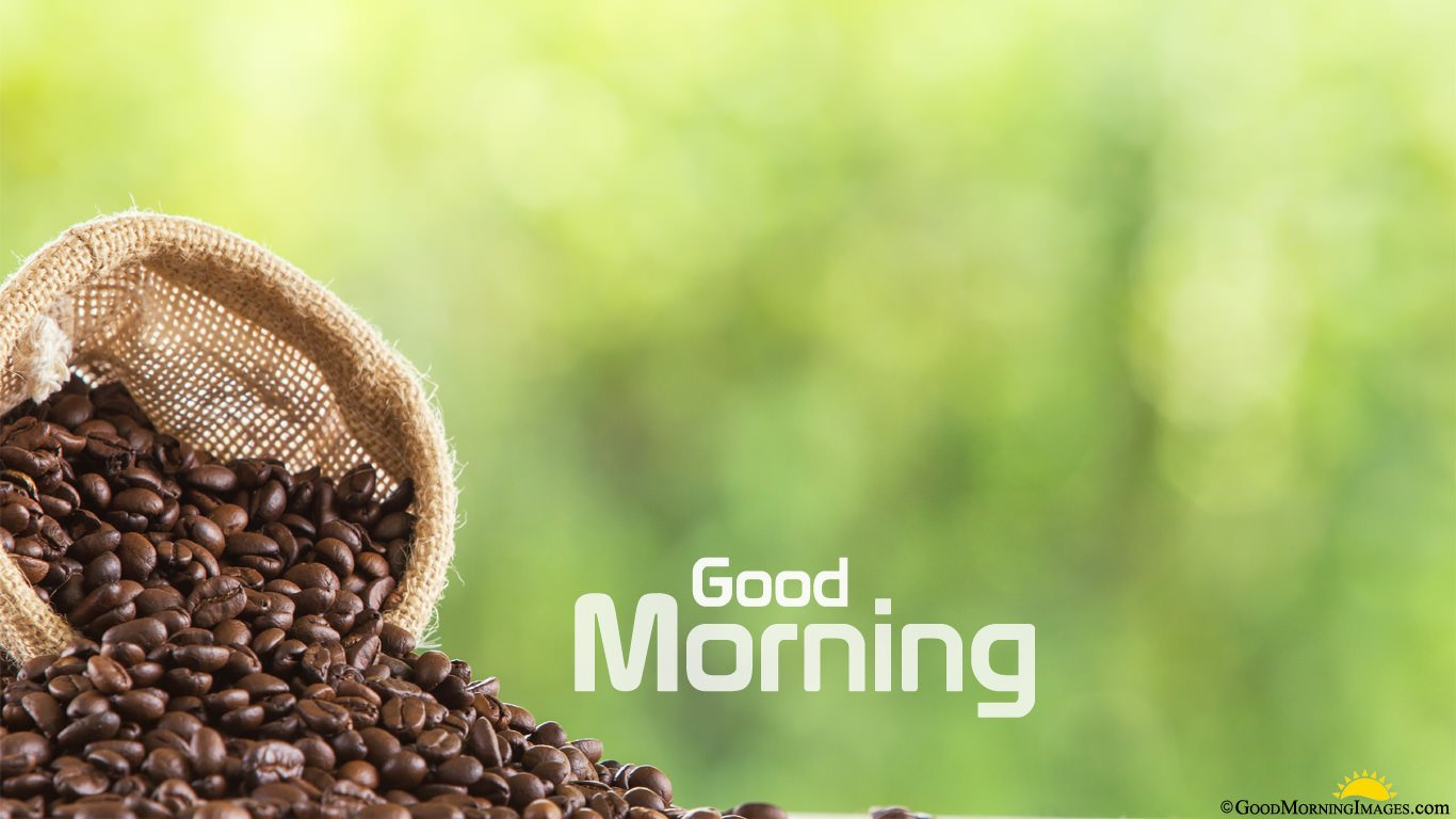 Good Morning Coffee Beans Full HD Picture