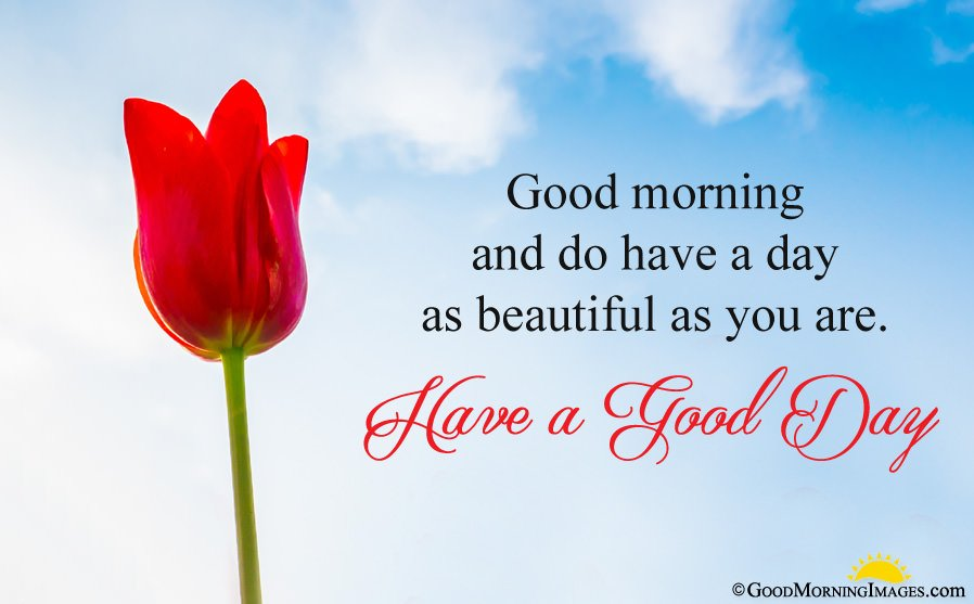 Have a Good Day Morning Wishes Images