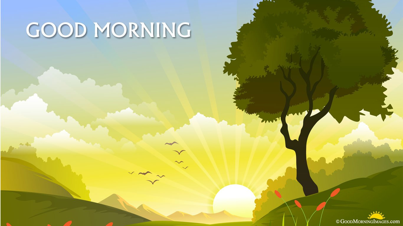 Latest Animated Sunrise HD Good Morning Wallpaper