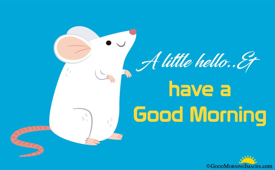 Latest Cute Mouse Good Morning Picture With Text