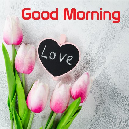 Good Morning Love DP Picture