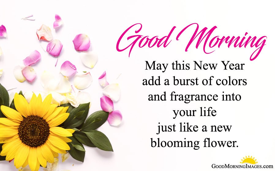 Good Morning New Year Images